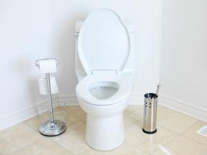 journee mondiale des toilettes